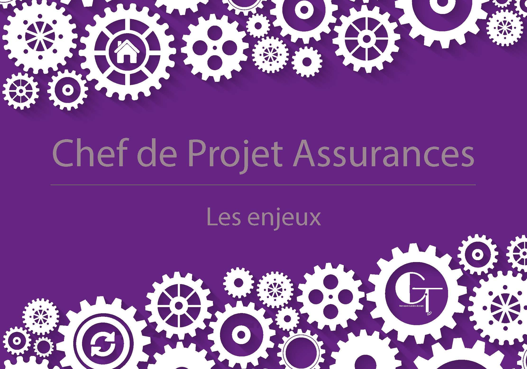 chef de projet freelance assurance: métier et systeme information