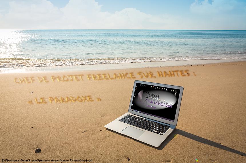 Chef de projet pmo freelance sur Nantes