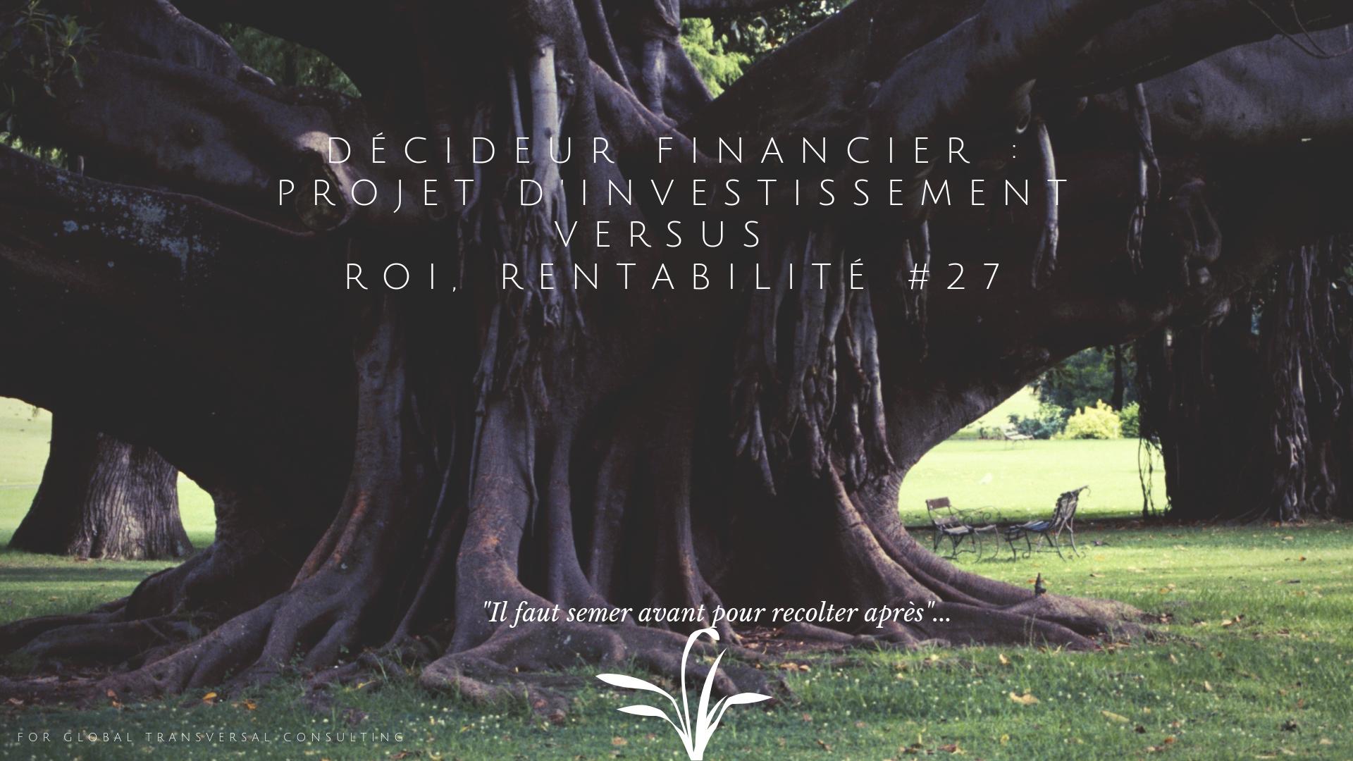 Décideur Financier : Projet d'investissement versus roi, rentabilité #27